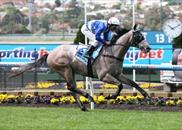 Divine Calling wins at Moonee Valley 14-9-13
