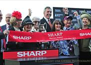 Driefontein wins the Group 3 Sheraco Stakes