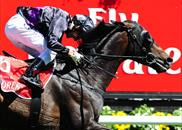 Fioente wins the 2013 Melbourne Cup