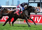 Fiorente wins the 2013 Melbourne Cup