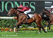 Needs Further winning the Group 3 Carbine Club Stakes