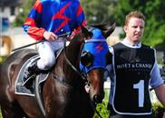 Pierro after winning the G1 Champagne Stakes Pierro after winning the G1 Champagne Stakes