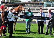 Spurtonic wins at Randwick 7-9-13